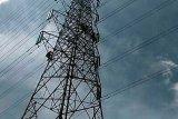 Perempuan pemanjat menara SUTET diturunkan