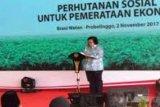Pokja Perhutanan Sosial Riau Belum Terbentuk, Ini Tanggapan KLHK