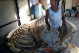 Rangka 11 meter terdampar di Tambelan