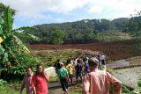 BNPB : baru tujuh korban longsor Brebes teridentifikasi