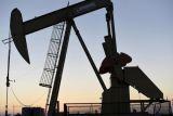 Harga minyak bervariasi