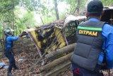 Ditpam lakukan sosialisasi dan penertiban kawasan hutan