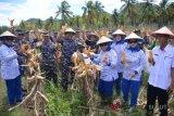 Lantamal Manado gelar berbagai kegiatan di Bolmut
