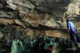 PHRI bantu promosikan destinasi wisata prasejarah Muna