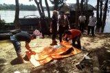 Jasad pria ditemukan mengapung tewas di DAS Barito