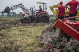 Petugas mengoperasikanTraktor Multiguna Roda 4 (PTM45) produksi PT Pindad di persawahan kawasan Sekejati, Bandung, Jawa Barat, Kamis (1/3). PT Pindad memperkenalkan Alat dan Mesin Pertanian (Alsintan) yakni Traktor Multiguna Roda 4 (PTM45), Mesin Penanam Biji-Bijian (Rotatanam PR1800) dan Mesin Pemanen Padi Dan Jagung (Combine harvester PP160) sebagai bagian pengembangan produk PT Pindad dalam upaya mendukung penguatan ketahanan pangan dan program pembangunan pemerintah. ANTARA JABAR/Novrian Arbi/agr/18.