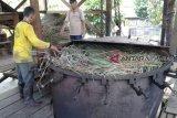 Wanginya minyak atsiri membuat petani di Solok berseri