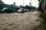 Akademisi: Bandarlampung minim kawasan serapan air