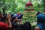 Wisatawan Botania Garden Purbalingga berebut gunungan buah