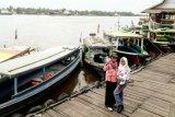 Wisata susur sungai Sampit perlu dermaga khusus