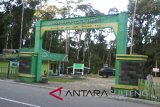 Danau Tambing, lokasi birding & camping menarik di Taman Nasional Lore Lindu