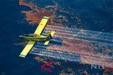 Petani rumput laut Indonesia tuntut tumpahan  minyak di Australia