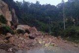 Jalan lintas Provinsi Riau-Sumbar nyaris lumpuh akibat longsor di Kampar