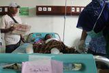 Korban ledakan sumur minyak meninggal dunia di RSUDZA