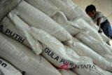 Peneliti CIPS desak kebijakan impor gula dievaluasi keseluruhan