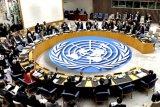 Dewan Keamanan PBB desak segera dilakukan gencatan senjata di Libya