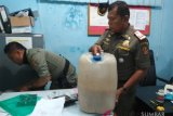 Razia pekat jelang Ramadhan, Tim SKP2D Agam sita puluhan liter tuak (Video)