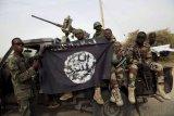Kelompok bersenjata mengakui bunuh empat sandera di Nigeria