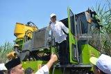 Menteri Badan Usaha Milik Negara (BUMN) Rini Soemarno menggunakan mesin panen tebu (sugarcane harvester) saat meninjau kesiapan giling produksi Pabrik Gula (PG) Gempolkrep PT Perkebunan Nusantara (PTPN) X tahun 2018 di Mojokerto, Jawa Timur, Senin (14/5). PG Gempolkrep menargetkan memproduksi 87.503 ton Gula Kristal Putih dengan tebu digiling sebanyak 1.082.200 ton pada musim giling 2018. Antara Jatim/Umarul Faruq/mas/18.