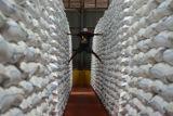 Gudang penuh, Bulog NTB tidak bisa lagi tampung beras impor