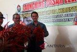 Dirjen sebut Indonesia tidak lagi impor bawang merah