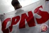 Bupati Karimun: Pengumuman CPNS di medsos hoaks