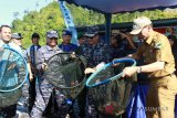 Komandan Lantamal II Padang panen ikan kerapu di kawasan Mandeh