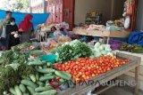 Harga tomat di Poso capai Rp18 ribu/kilogram