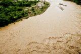 Minum air tercemar, lima meninggal akibat wabah kolera di Nigeria