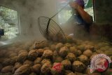 Sainah, penjual bakso tusuk, berpenghasilan Rp90 juta/bulan