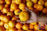 Peneliti : Makan jeruk pelihara daya pandang