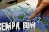 Gempa 5,5 SR goyang Halmahera