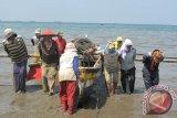 Pemkab Kupang latih nelayan tradisional