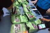 PT KAI Tanjung Karang antisipasi penyelundupan narkoba