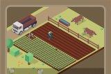 Kenaikan NTP Tidak Berdampak pada Keuntungan Petani