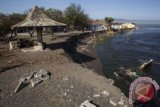 Tempat pelelangan ikan Pantai Samas ditata