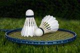 Olahraga yang dijagokan Nino RAN di Asian Games