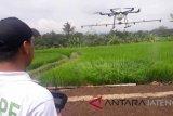 Kementan perkenalkan drone penyemprot tanaman