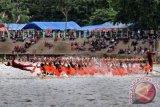 Bupati Mursini buka festival pacu jalur di Lubuok Sobae