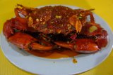 Daging kepiting percepat pemulihan luka