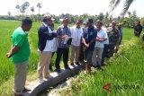 Komisi V DPR tinjau lokasi pembangunan jembatan gantung