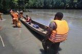 Tim SAR mencari Kepala Kampung Holkima diduga hanyut di Sungai Ibele