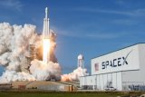 SpaceX akan terbangkan penumpang pertama mengitari bulan