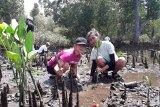 Manengkel Solidaritas-DKP-13 Organisasi Tanam Mangrove di Mokupa