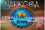BNN Sumsel  tangkap pemilik sabu 20 kilogram
