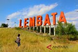 Pemprov NTT bangun jalan menuju Bukit Cinta Lembata