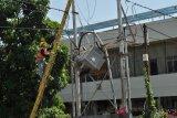 7.200 pelanggan PLN Palu bebas tagihan listrik