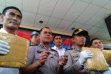 Petugas sita 80 kilogram ganja dari empat pengedar di wilayah karawang