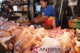 Daging ayam lokal lebih mahal dari pasokan luar Papua