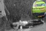 Seorang penumpang motor tewas dihantam truk di Desa Bereng Rambang